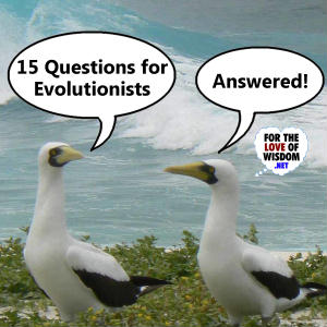 15 Questions for Evolutionists - Answered