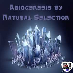 Abiogenesis by Natural Selection