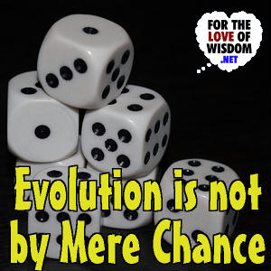 Evolution Is Not By Mere Chance